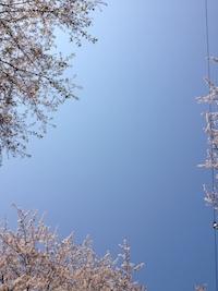 2014-0410-sora