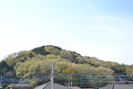 2014-0413-haru