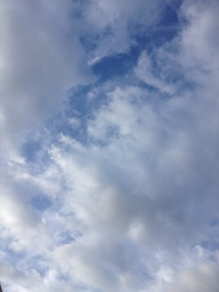 2014-0913-sora