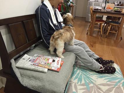 2014-1231-hiro