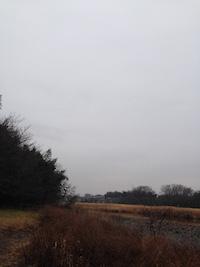 2015-0122-sora