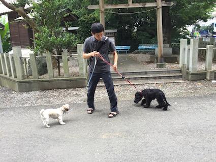 2016-0726-wan