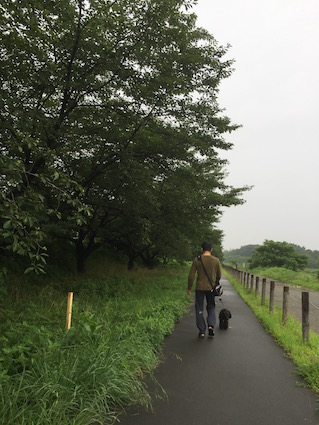 2016-0727-wan1