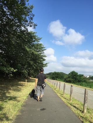 2016-0731-wan1