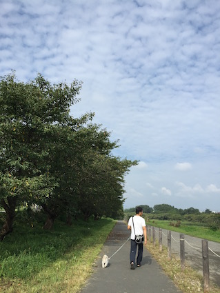2016-0917-wan1