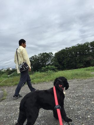 2016-0921-wan1