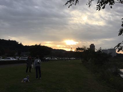 2016-1031-wan2